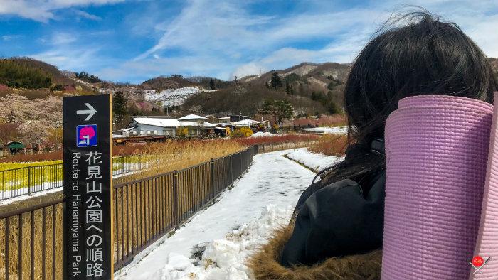 hanamiyama-park-2_explorando-o-japao_vida-de-tsuge_vdt