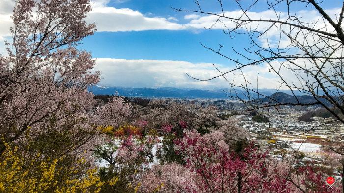 hanamiyama-park-7_explorando-o-japao_vida-de-tsuge_vdt