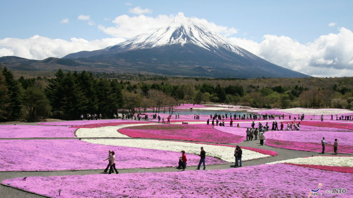 m_158857_monte-fuji_viagem-pro-japao_vida-de-tsuge_vdt