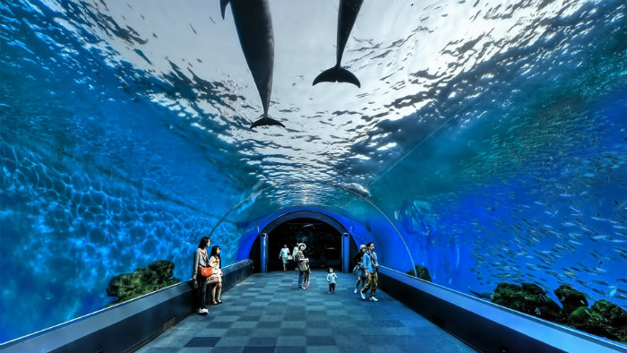 yokohama-hakkeijima2_aquarios-no-japao_viagem-pro-japao_vida-de-tsuge_vdt