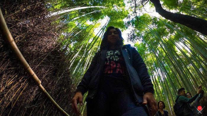 bamboo-forest_3_arashiyama_viagem-pro-japao_vida-de-tsuge_vdt