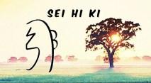 Sei He Ki -Simbolo Emocional e de proteção