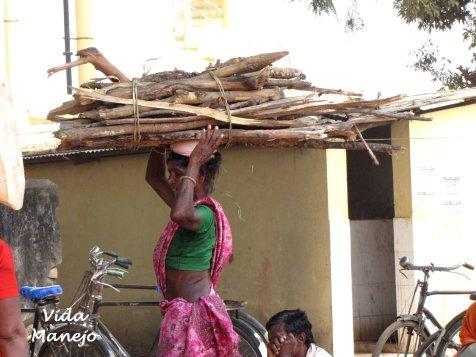 Bringing wood from neighboring jungle