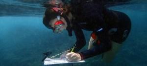 Anotando observaciones bajo el agua