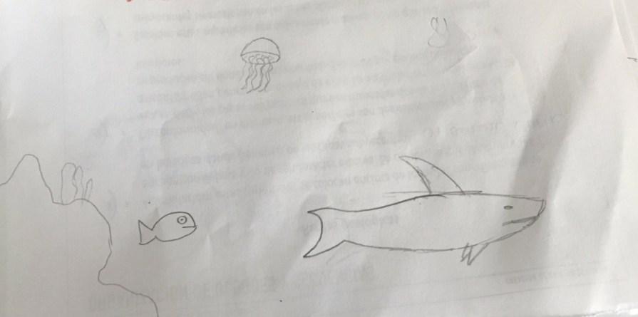 Ecosistema marino según un alumno de 5º de Primaria