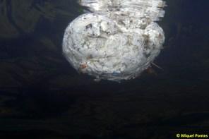 Bola flotante de papel y plástico, por Miquel Pontes