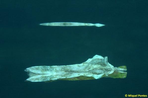 Restes plàstiques a dos aigües