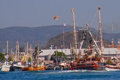 Parque Bonfíl, the working portion of the port