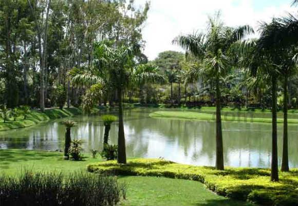 10 jardins Instituto Inhotim Brumadinho - vida saude e bem estar