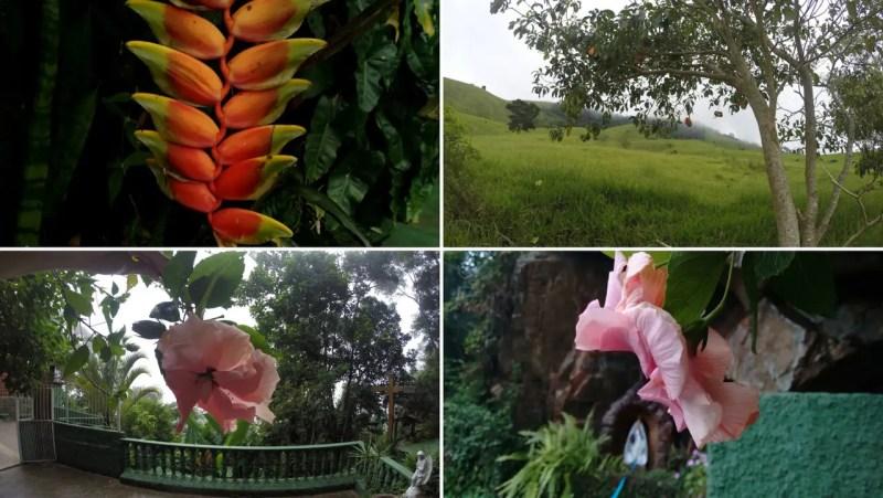 Vida sem Paredes - Santuário Ecológico da Água Santa (15)