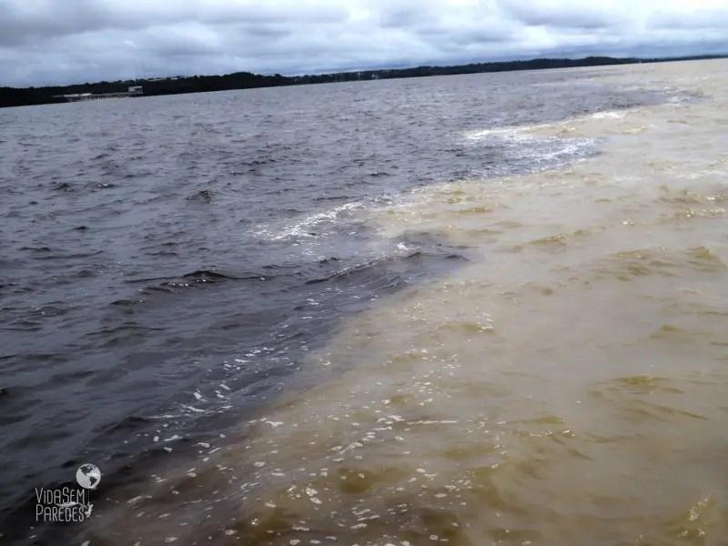 Encontro das Águas: o passeio mais famoso de Manaus