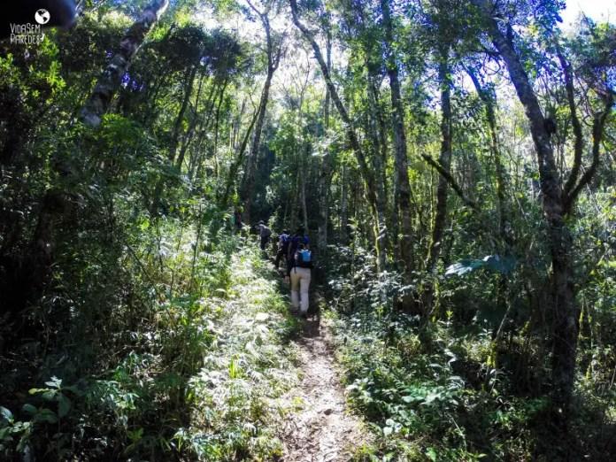 Dicas da trilha do pico Cabeça de Dragão