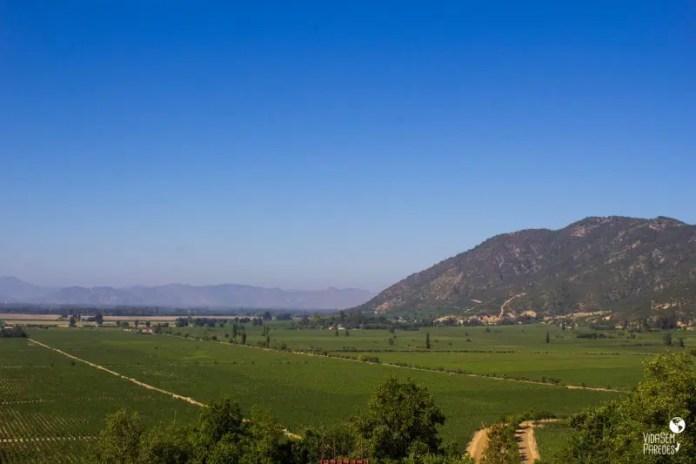 Viña Lapostolle - Vinhedo Clos Apalta, Valle de Colchagua, Chile