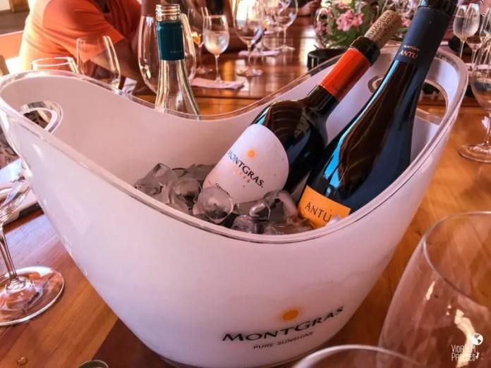 vinícolas no Vale do Colchagua, no Chile: Viña MontGras