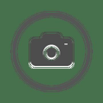 vide grenier du sallanches basket club