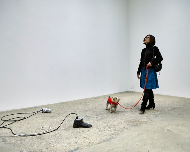 1502982817800-dOGUMENTA-image-5 Doggone Cute Pics From America's First Art Show for Dogs Art