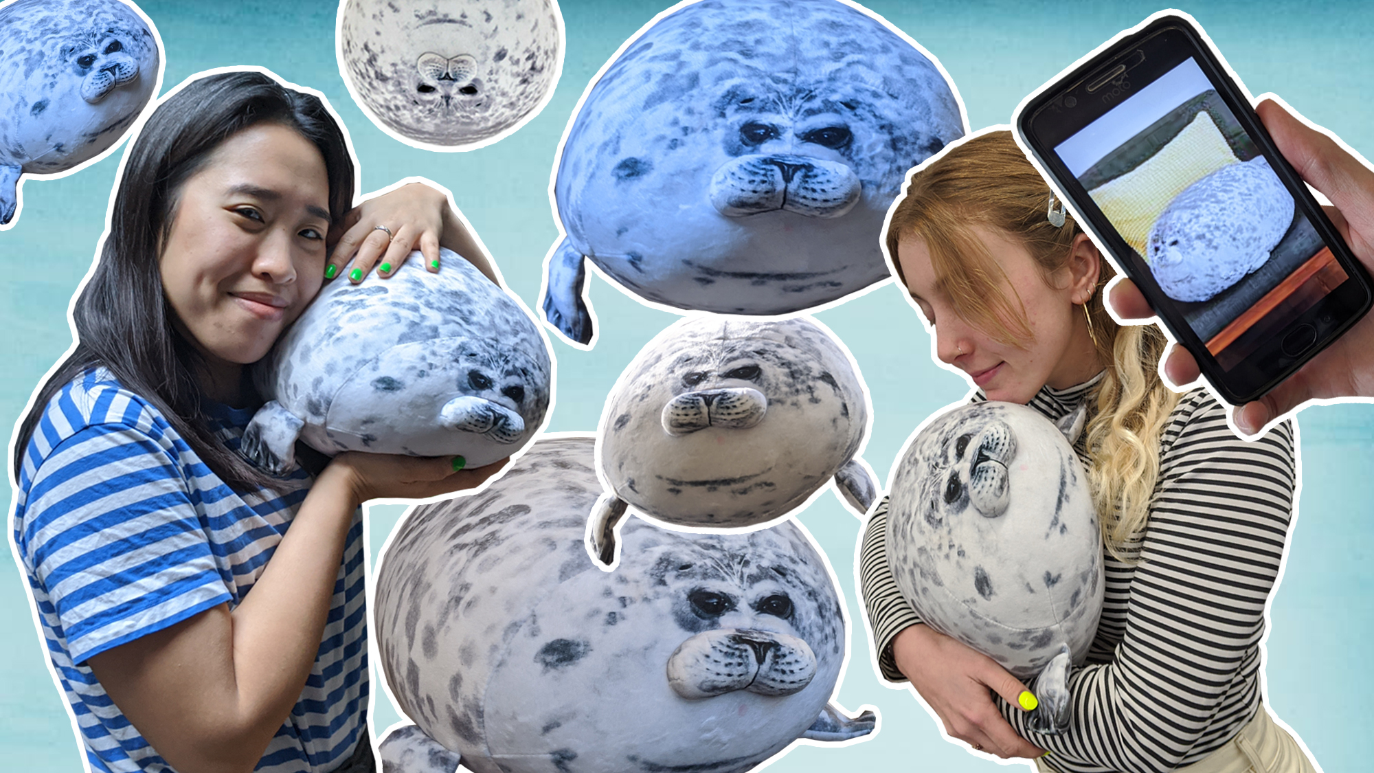 what is the chonky seal pillow and