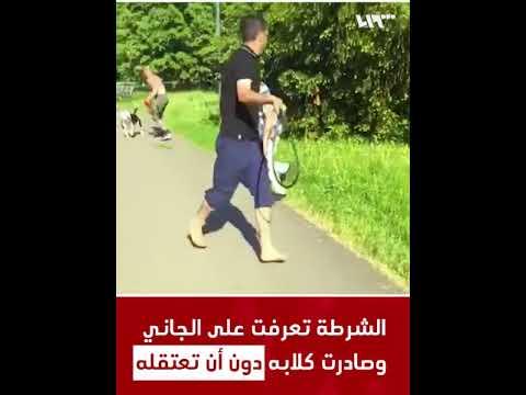 بالفيديو… ألماني يعتدي على سوري ويطلق كلبيه المفترسين لعضه