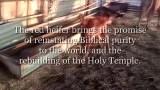 بعد ولادة بقرة حمراء.. هل يعلن اليهود بناء الهيكل واقتراب يوم القيامة؟