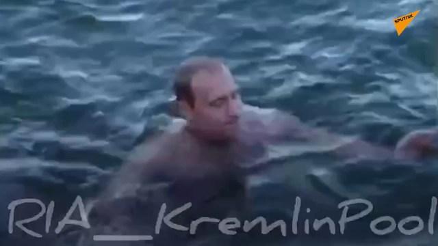 """فيديو يعرض لأول مرة للرئيس الروسي """"بوتين"""" وهو يسبح مع الدلافين"""
