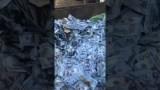 دولارات في مستوعبات النفايات ببيروت