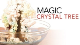 Magic Crystal Tree – Sick Science! #065