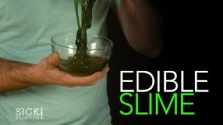 Edible Slime – Sick Science! #163