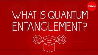 What can Schrödinger's cat teach us about quantum mechanics? – Josh Samani