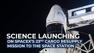 Science Launching on SpaceX's 23rd Cargo Resupply Mission to the Space Station