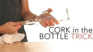 Cork in the Bottle Trick – Sick Science! #015