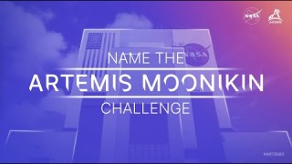 Name the Artemis Moonikin