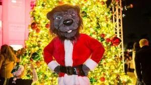 2018 xmas - Christmas 2018