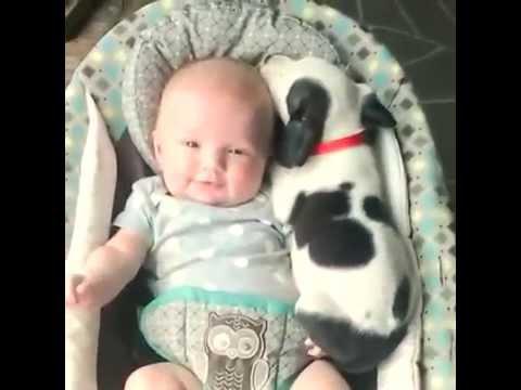 Κουτάβι ανεβαίνει στην αγκαλιά ενός μωρού για να κοιμηθούν μαζί