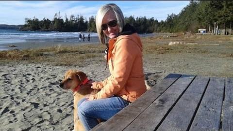 Sea lion Barking at Dog – Το Σκυλί κι ο Θαλάσσιος Λέοντας