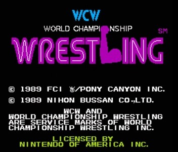 WCW Wrestling facts