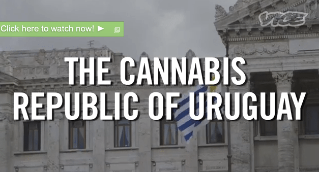 The Vice Guys Smoke Weed With the President of Uruguay
