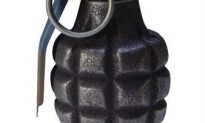 Woman Finds Live Grenade In Her Backyard
