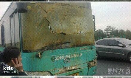 Just in Case You're Wondering What Happens When a Bus Hits a Truck Full of Poo