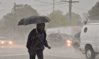 Wind And Wet Weather Trigger Thousands Of Outages On Long Island