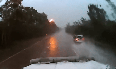 Australia Dash Cam Footage Shows Horror On The Roads!