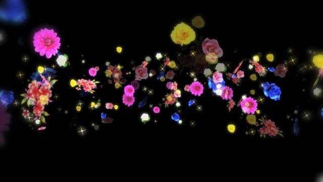 ВИДЕОПЕРЕХОДЫ FLOWERS (ЦВЕТЫ) — Full HD 1080p