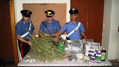 Photo of Lettere – Arrestato giovane per coltivazione di cannabis