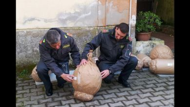 Photo of Capua – Sequestrati 800 kg botti pericolosi: 5 persone denunciate