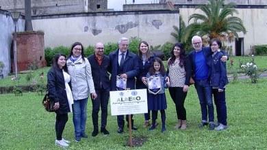 Photo of Cimitile – Leo4Green, donati tre ulivi