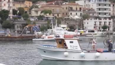 Photo of Cilento – Il pescato della dieta Mediterranea