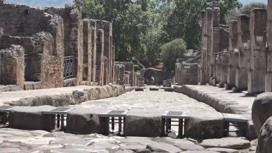 Photo of Pompei, Alla scoperta degli Scavi con Geronimo Stilton