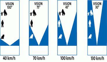 Le champs visuel et la vitesse