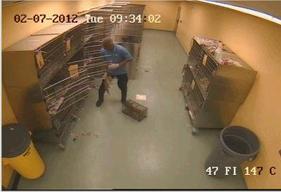 Puppy's leg shut in cage door 4 times at Memphis pound