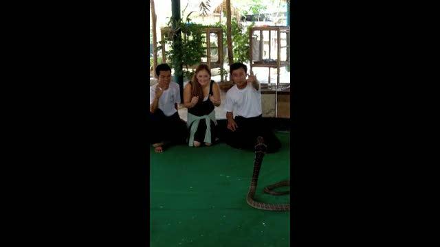 Marian vs cobra