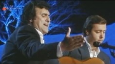 Granaína. José de la Tomasa. 1989